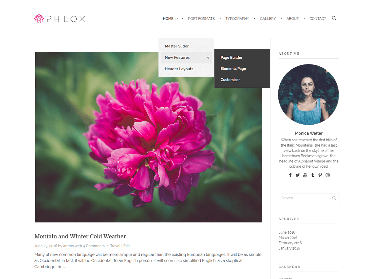 پوسته وبلاگی فلوکس